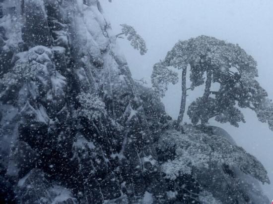 在安徽黄山风景区拍摄的雪景